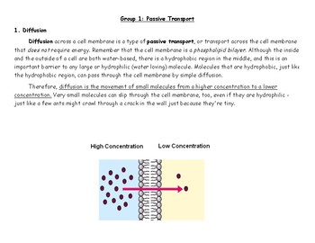 Cell Transport Activity