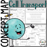Cell Transport Concept Map Graphic Organizer