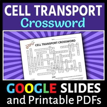 Cell Transport Crossword {Editable}