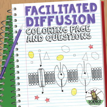 Cell Transport Facilitated Diffusion Coloring Page and Application Questions