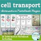 Cell Transport Interactive Notebook Activities
