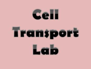 Cell Transport Lab