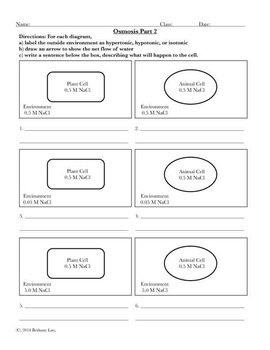 Cell Transport Osmosis Coloring Page or Poster and Application Question Pages