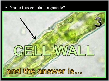 Osmosis, Cell Transport Quiz Game