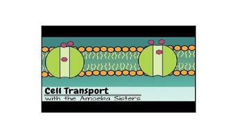 Texas Biology EOC Cell Transport PowerPoint