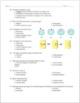 Cell Transport Practice Worksheet