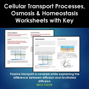 Cell Transport Processes,  Osmosis and Homeostasis Worksheets with Key