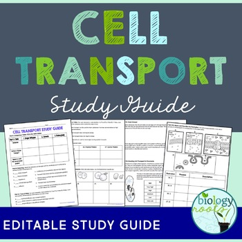 Cell Transport Study Guide