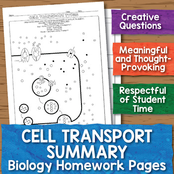 Cell Transport Summary Homework Worksheets