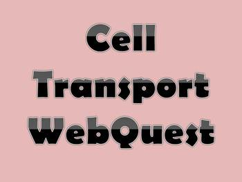 Cell Transport WebQuest