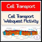 Cell Transport WebQuest Activity