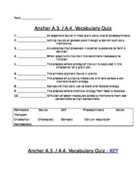 Cell Transport and Energy Transformations Vocabulary Quiz Assessment (Quiz)