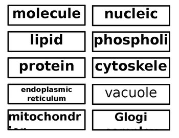Cell Unit Word Wall Words