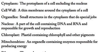 Cell Vocabulary
