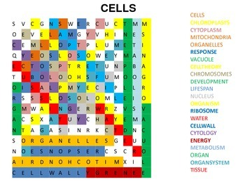 Cell Vocabulary Puzzle