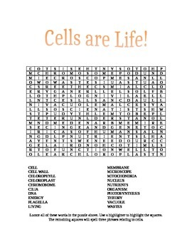 Cell Wordsearch