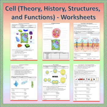 Cell - Worksheets
