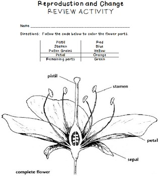 Cell and Plant Reproduction
