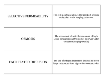 Cell biology vocab flashcard set