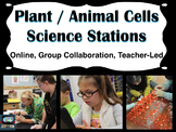 Cell differences Science stations (online, group collaboration, teacher-led)