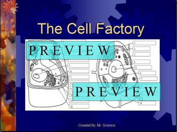 Cells #1 Powerpoint Lesson on the Basic Organelles