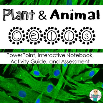Plant and Animal Cells + Organelles Bundle