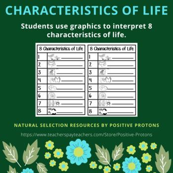 Cells: 8 characteristics of life