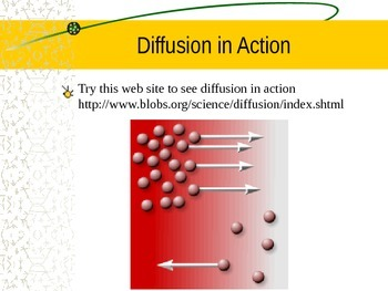 Cells- Active and Passive Transport