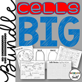 Cells Unit BIG Bundle of Activities and Assessments
