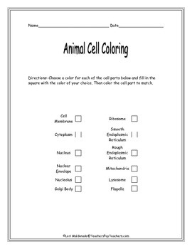Cells: Animal Cell Diagram to Color