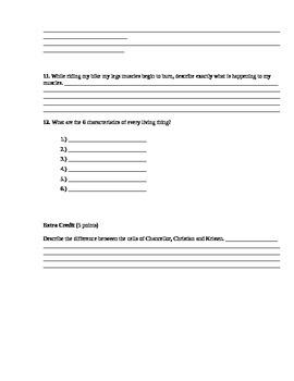 Cells - Assessment (Test)