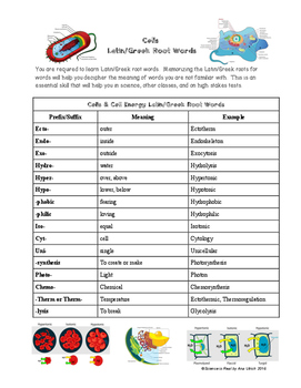 Cells Biology Greek/Latin Prefixes & Suffixes Reference Sh