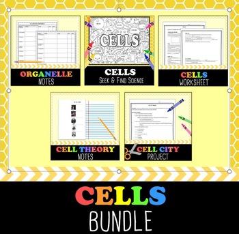 Cells Bundle