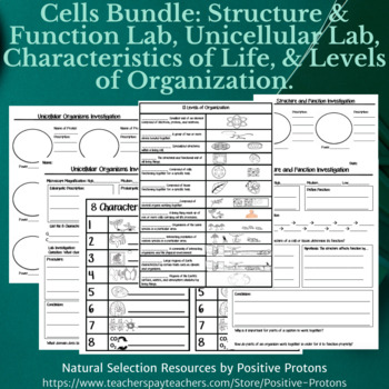 Cells Bundle: structure & function lab, 8 characteristics, level of organization