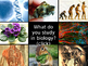 Cells - Cell Theory, Cell Types & Tissues/Organs PPT
