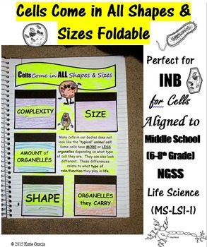 Cells Come in All Shapes & Sizes Foldable