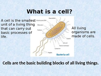 Cells: Comparing and Contrasting Plant and Animal Cells Power point presentation