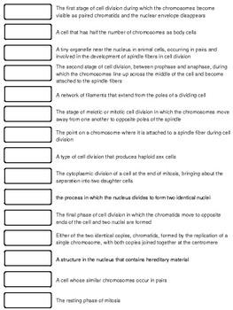 Cells Cut-n-Paste Vocabulary (Bundle Product)