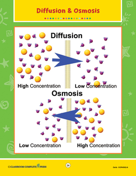 Cells: Diffusion and Osmosis Gr. 5-8