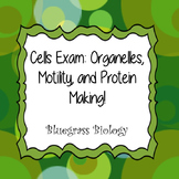 Cells Exam