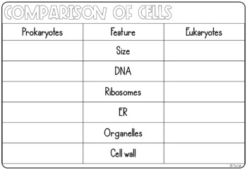 Cells Graphic Organizers