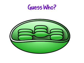 Cells Guess Who? Game