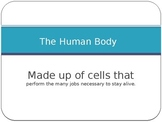 Cells/Human Body Systems Powerpoint
