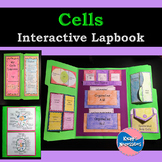 Cells Interactive Lapbook - Cell Diagrams and Theory, Orga