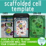 Interactive Cell Model