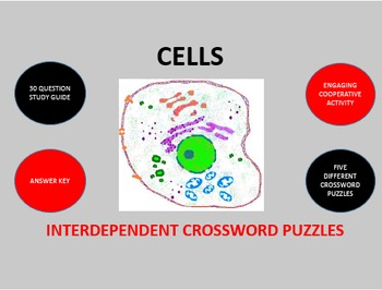 Cells:  Interdependent Crossword Puzzles Activity