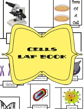 Cells Lap Book
