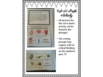 Cells Literacy and Science Activities Bundle