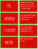 Cells Matching