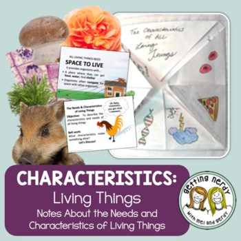 Needs Characteristics Of Living Things By Getting Nerdy With Mel And Gerdy